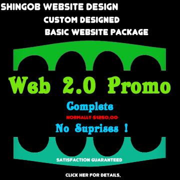 Internet Promo Custom Website Package